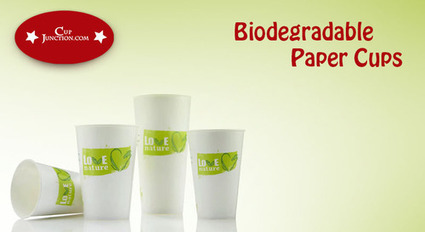 What you know about biodegradable plastic and paper cups? | Disposable Plastic and Paper Cups | Scoop.it