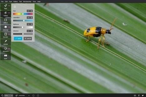 Pixlr's free photo editor goes native on Windows and OS X - PCWorld (blog) | Edtech PK-12 | Scoop.it