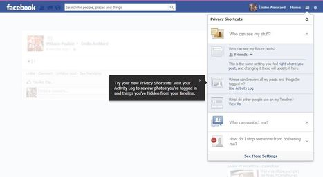 Avez-vous remarqué ce nouvel onglet FACEBOOK pour gérer vos options de vie privée? | Actu Web, Réseaux sociaux et e-marketing | Scoop.it