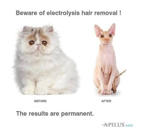 Permanent Hair Removal with Latest Apilus Electrolysis System | Laser & Medi Treatments | Scoop.it
