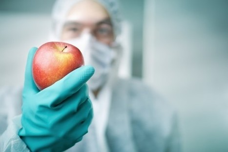 Who's afraid of the big bad GMO?   C2C   A Better Food System   Scoop.it
