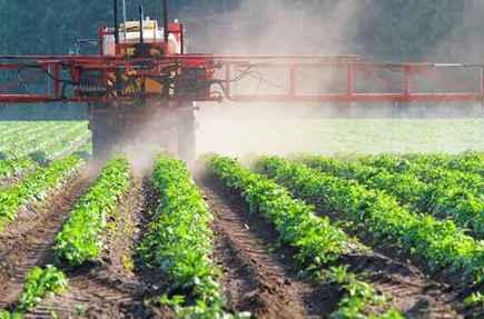 Les pesticides : quelles conséquences pour la santé? | Indignons nous : la dégradation de l'environnement impacte notre santé | Scoop.it