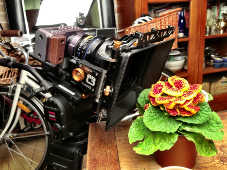 Hard Clipping | Understanding the issues with the Black Magic Pocket Cinema Camera by  John Brawley | Cinematography, Photography and Filmmaking Thoughts | Scoop.it