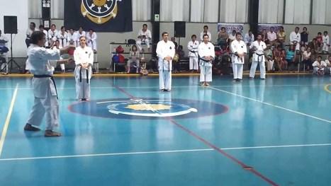 Exhibición Delegación Argentina Perú 2013   Goju-Ryu Karate-do   Scoop.it
