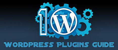 Beginner's Guide For Developing WordPress Plugin | Web Design | Scoop.it