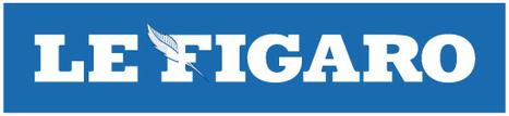 Le Figaro - Financement participatif: le Web fédère les investisseurs | SPEAR dans la presse | Scoop.it