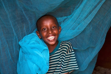 Saving lives with simple mosquito nets on World Malaria Day! | Women's WorldWide Web | Social Impact | Scoop.it