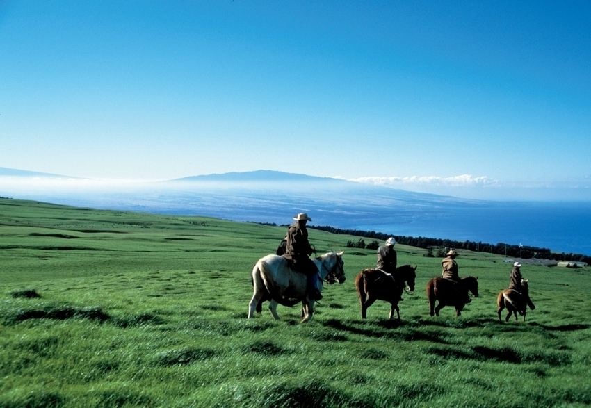 Saddle up! Westerns are in (Django Unchained and the Lone Ranger), so why not try these horseback rides... | Western Shopping, Untamed