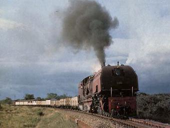 Stop the Serengeti Railway - Highway - Serengeti Watch   May geo 152   Scoop.it