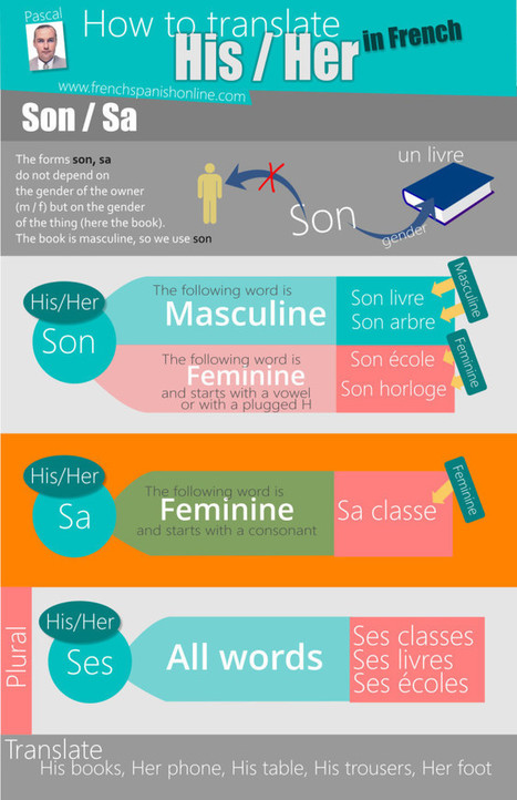 How to say His and Her in French « Learn French Online Learn French Online | Learn French online | Scoop.it
