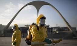 Zika virus makes Rio Olympics a threat in Brazil and abroad, health expert says | Emerging Viruses, Virus Discovery and Virus Characterization | Scoop.it