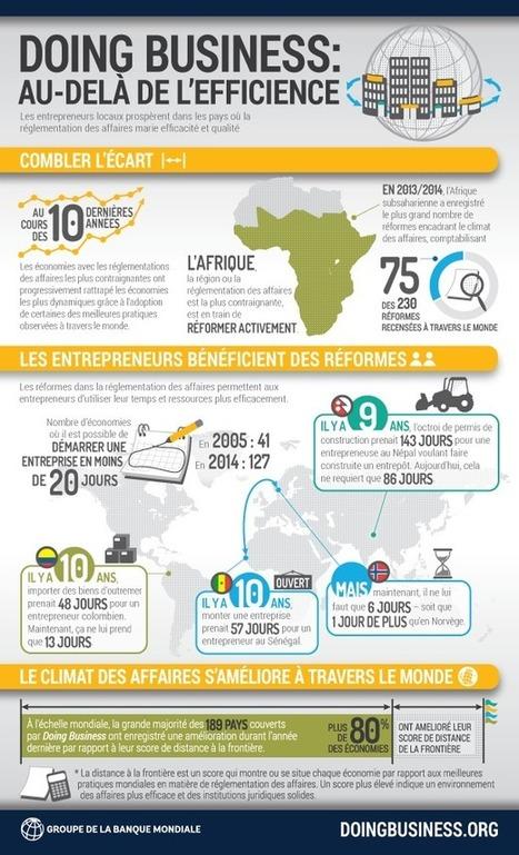 Faire affaires en Afrique : la lourdeur administrative | Économie et développement international | Scoop.it