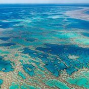 Will the Great Barrier Reef be gone in 35 years? | All about water, the oceans, environmental issues | Scoop.it