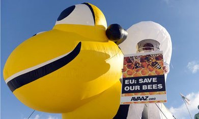Bee-harming pesticides escape proposed European ban | News | Scoop.it