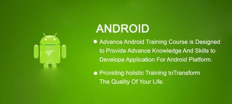 Archie Infotech-Web Design & Software Company IT training courses Delhi,INDIA | Web Services | Scoop.it