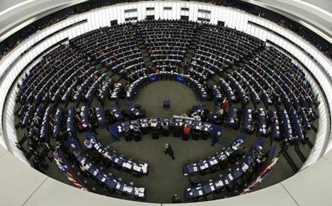 Les centres équestres manifestent devant le Parlement européen | Cheval et Nature | Scoop.it