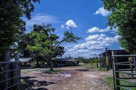 Alcaldía de San José del Guaviare dona lote para  construir nueva sede del SENA | ACIUP | Scoop.it