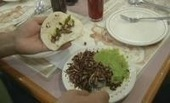 How To Make A Mealworm Pizza (VIDEO) - Huffington Post | Interesting Insects | Scoop.it