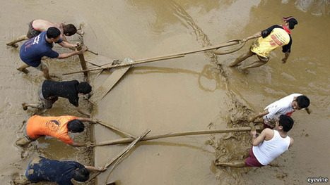 Save our cities   Year 5 Geography: Flooding in the Asia region   Scoop.it