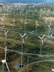 Forget Eagle Deaths, Wind Turbines Kill Humans | Wind Energy | Scoop.it