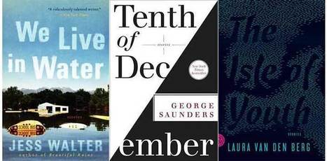 Short and Sweet: The Best Short Story Collections of 2013 | Amazing Book Features | Scoop.it