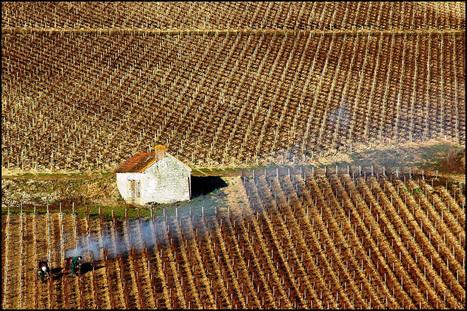 Sur les plus belles routes des vins de France | Vinideal - A la recherche de votre Vin Idéal ! www.vinideal.com | Scoop.it