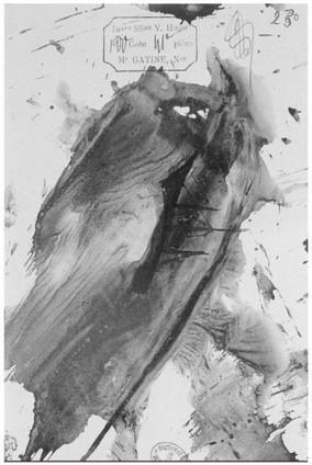 Image, matière : immanence- entretien avec Georges Didi-Huberman | Entre-là | Art, literature and #Museogeek | Scoop.it