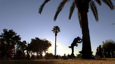 Tim Steller: This is Tucson, so let's ditch the palm trees | Arizona Daily Star | CALS in the News | Scoop.it