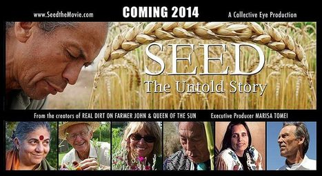 The Untold Story of Disappearing Seeds | Music, Videos, Colours, Natural Health | Scoop.it