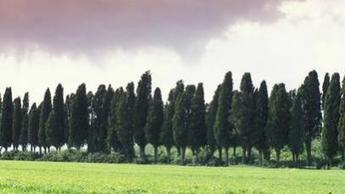 La Toscana val bene un agriturismo | Agriturismo Italia | Scoop.it