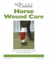 Horse Wound Care – America's Horse Daily | Horse Sense | Scoop.it