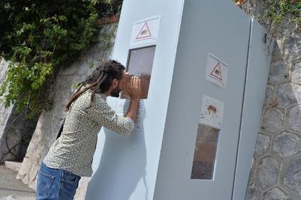 Pas bête! Dispositif inédit pour se protéger des abeilles à Menton | Abeilles, intoxications et informations | Scoop.it