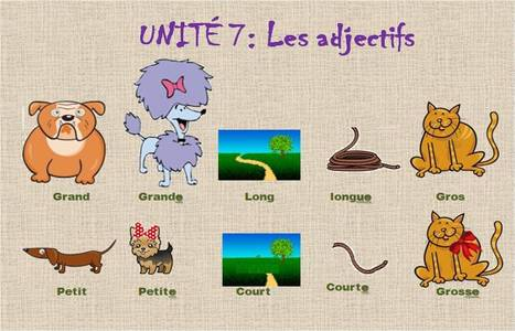 Les adjectifs   French choses   Scoop.it