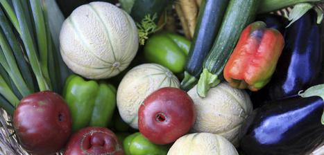 Agriculture : des logiciels pour les «circuits courts» | Elevage Laitier ~ PYB | Scoop.it