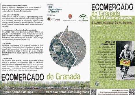 Ecomercado de Granada   Medio ambiente   Scoop.it