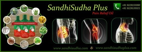 Sandhisudha Plus™ - Herbal Joint Pain Relief Treatment for Ankle, Back, Shoulder, Knee, Elbow, Body Pain | Sandhi Sudha Plus - Joint Pain Relief Oil | Scoop.it