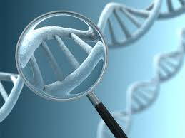 After Patent Ruling, Availability of Gene Tests Could Broaden | Breast Cancer News | Scoop.it