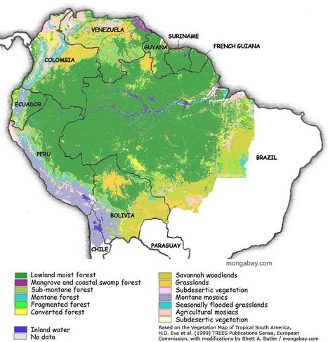 12 facts about Amazonia's water, energy, food and health | Gaia Diary | Scoop.it