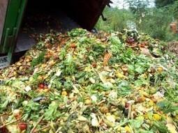 Food Wastes Disposal Methods | Hazardous wastes management | Scoop.it