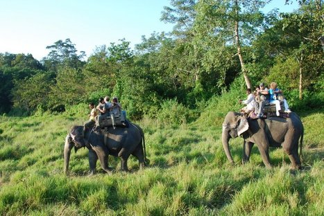 Chitwan Tour | Tour in Nepal | Scoop.it
