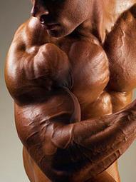 10 normas básicas para mejorar en el gimnasio | Camino al Culturismo | Ayuda en el gym. | Musculación | Scoop.it