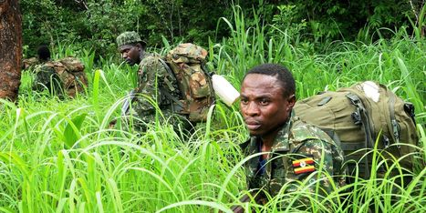 LRA Defectors Say No One Has Seen Joseph Kony In Years - Huffington Post | International Criminal Court | Scoop.it