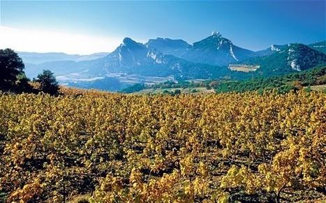 When in Rhône... | Vitabella Wine Daily Gossip | Scoop.it