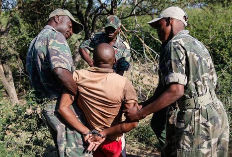 Le dernier rhinocéros blanc possède ses propres gardes du corps | Afrique: développement durable et environnement | Scoop.it