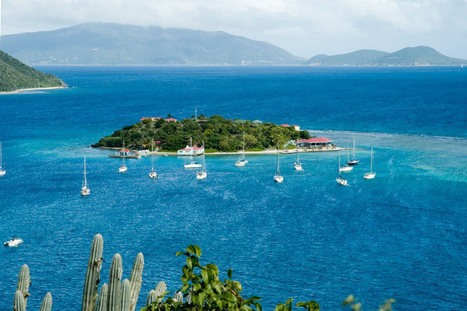 7 Top Tour Companies in the British Virgin Islands | Caribbean Islands | Scoop.it