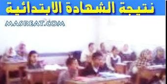 نتيجة الشهادة الابتدائية محافظة القليوبية | رسائل حب | Scoop.it
