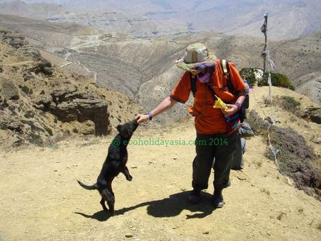 Upper Mustang Trek - Eco Holiday Asia | Eco Tourism In Nepal | Scoop.it