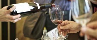I controlli sui vini di Villa Favorita, pesticidi in dodici etichette | Wine in Tuscany | Scoop.it