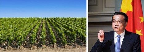 Les vins de Bordeaux enfin protégés de la contrefaçon en Chine? | Le vin quotidien | Scoop.it