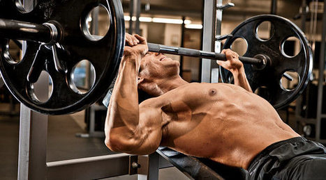 Build Up Your Chest Workout   Health and Fitness   Scoop.it